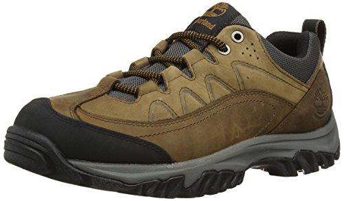 De Thorton Trekking Ftp Zapatillas Y Wp bridgeton Timberland Low eWdrxBoC